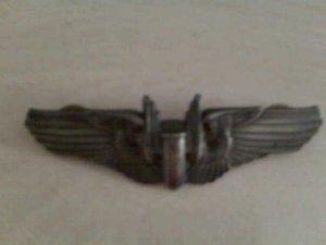 Papa's WWII wings